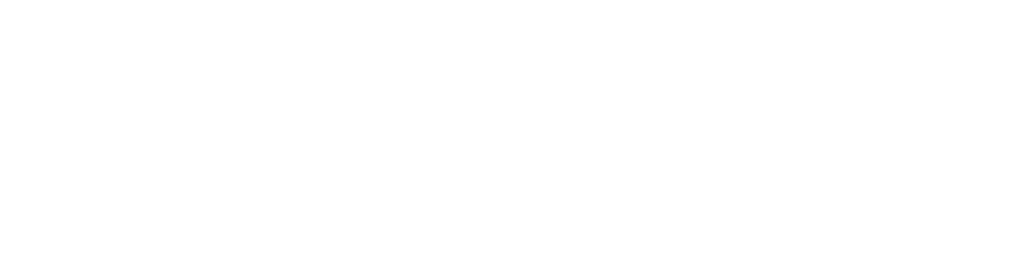 Smartfox_logo